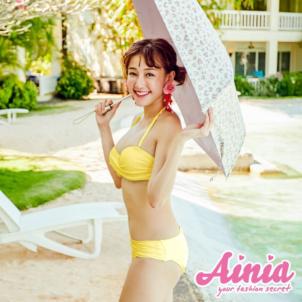 維多冒險 鋼圈顯瘦二件式比基尼 S-XL AINIA,泳衣,兩件式泳衣,比基尼,二件式泳衣,Ania