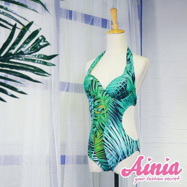 熱帶森巴 挖腰式連身顯瘦兩件式泳衣 M-XL AINIA,泳衣,連身,Ania,Alnla,挖腰